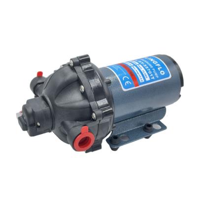 5 Chamber DC Diaphragm Pump HY Series